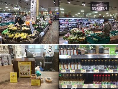 Shibuya_2_2
